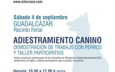 Demostración de trabajo con perros y taller participativo.